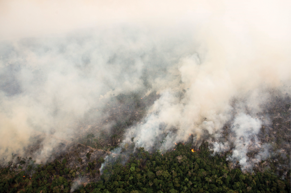 fires in the Jamari Forest Reserve, Brazil