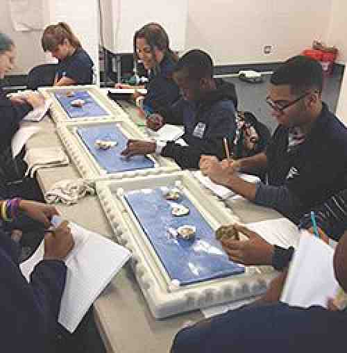 Students at the New York Harbor School dissect oysters.