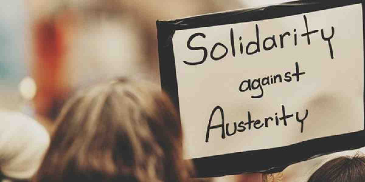 person holds sign that says solidarity against austerity