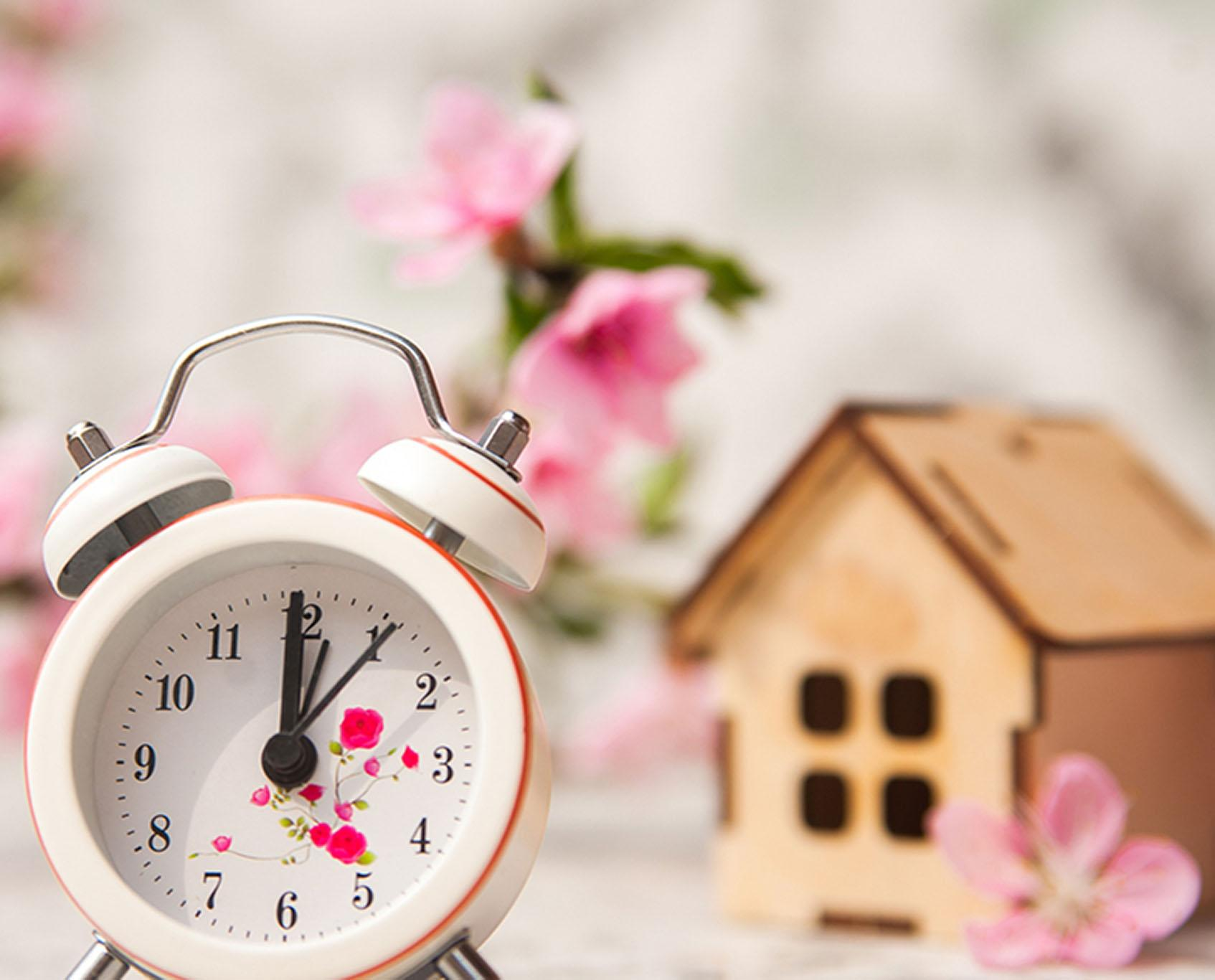 alarm clock with birdhouse in background